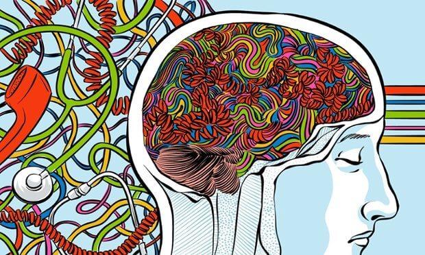 Persons hjerne illustreret med farver
