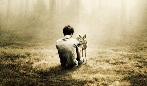Mand sidder med hjort i skov