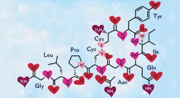 Kærlighedens kemi illustreret