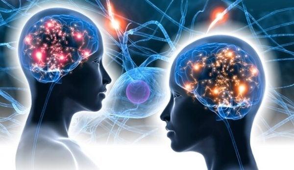 Neurovidenskab af Antonio Damasio