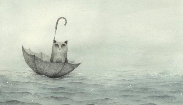 Kat sidder i omvendt paraply på vand