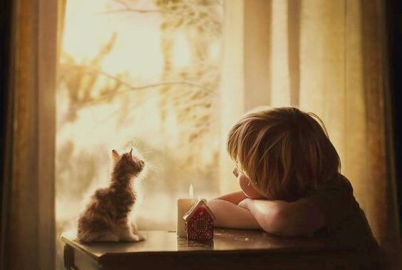 Barn med kat kigger ud af vindue