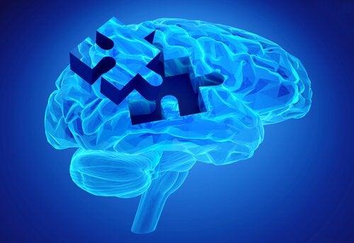 Brik i hjerne symboliserer arbejdshukommelse