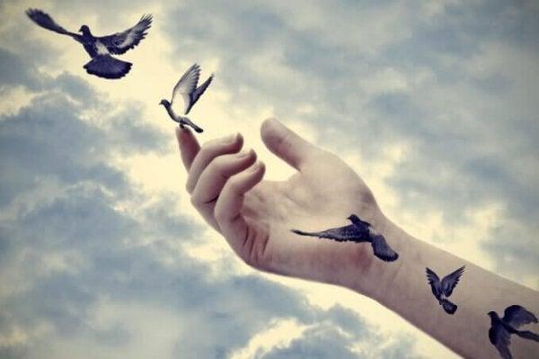 Fugle flyver fra arm for at give plads til nye ting