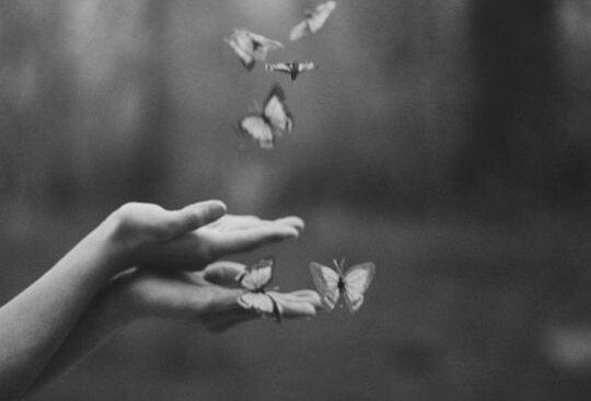Sommerfugle i hænder symboliserer sommerfugleeffekten af problemer