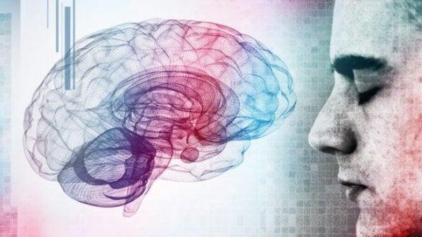 Mand med farvet hjerne er ekstremt intelligent