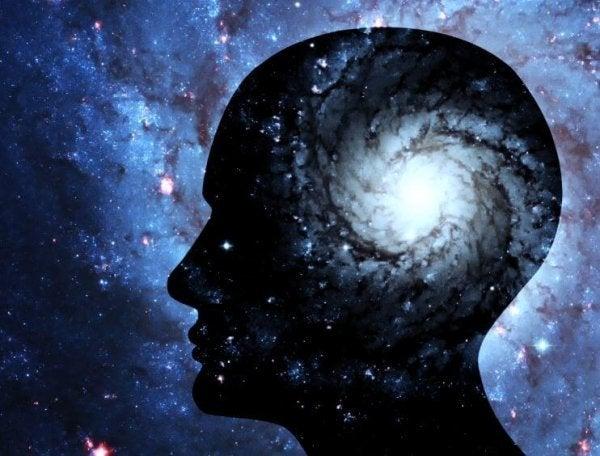 Hjerne som univers