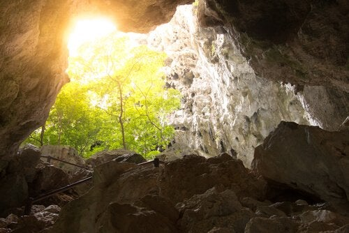 At vække selvbevidsthed er som at se lys i en hule