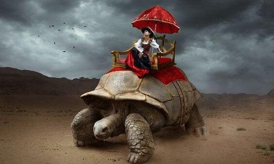 Mand på kæmpe skildpadde