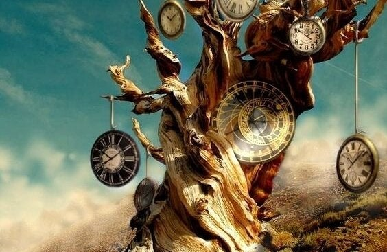Ure på træ
