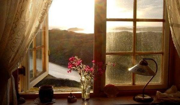 Man kan vise taknemmelighed for en smuk udsigt fra vindue