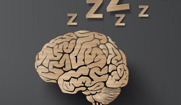 Sovende hjerne