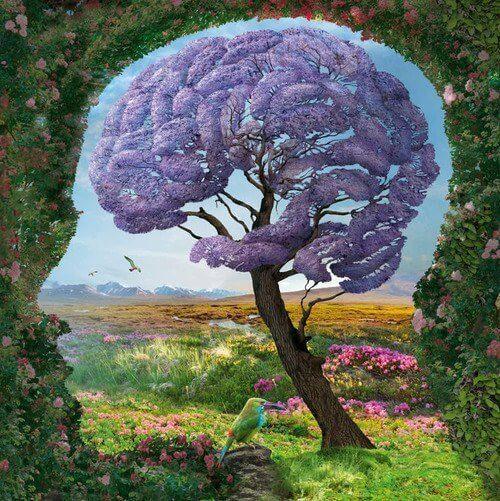 Det limbiske system: hvordan fungerer det?