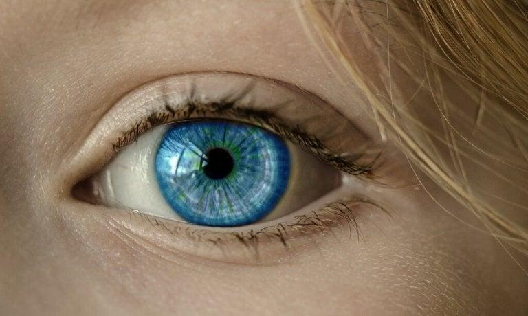 Blåt øje med intenst blik