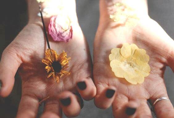 Blomster i håndflader