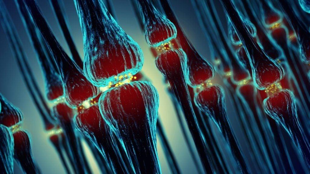 Nærbillede af celler