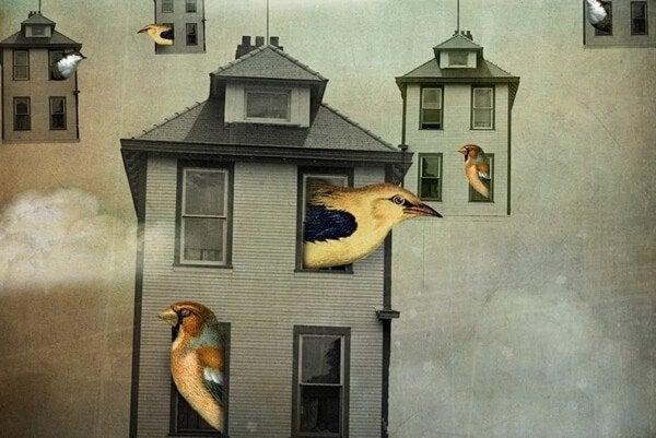 Fugle i hus føler en kollektiv narcissisme