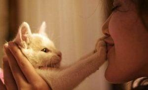 Kvinde nyder katteterapi