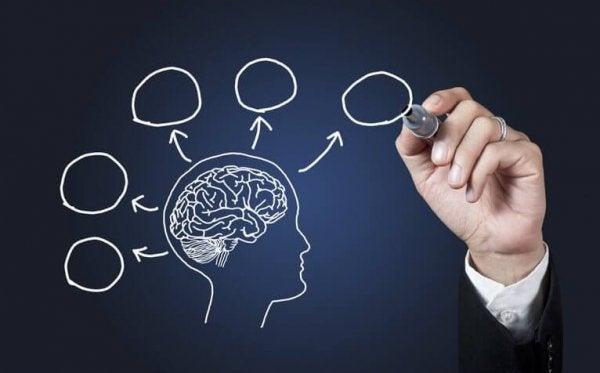 10 grunde til at vælge at studere psykologi