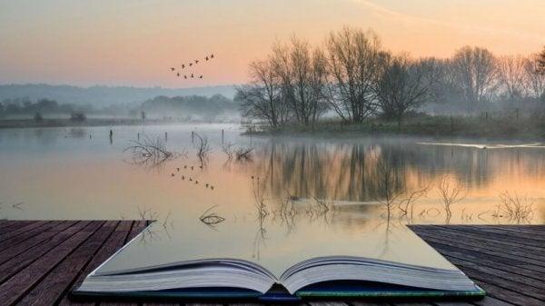 Åben bog foran sø illustrerer en magt bag ord