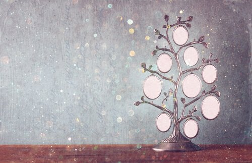 Stamtræ: et redskab til vækst og heling