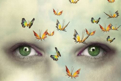 Sommerfugle flyver forbi grønne øjne