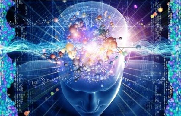 Lys illustrerer hjernebølger