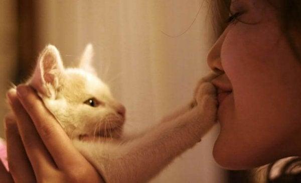 Pige kysser kats poter