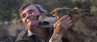 Marcos levede blandt ulve