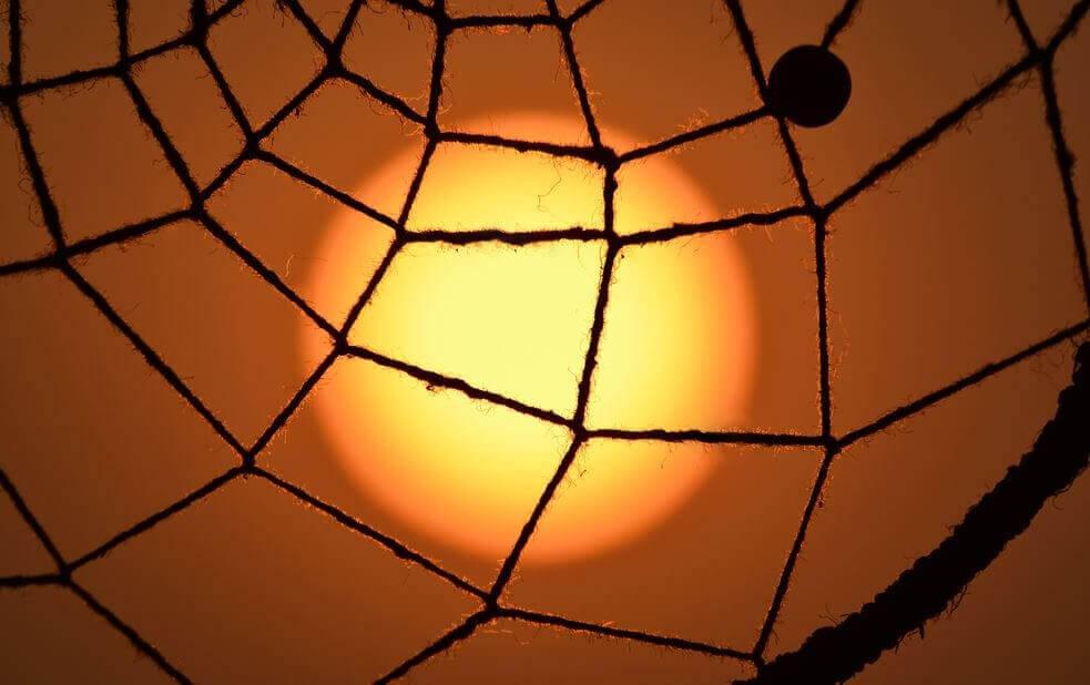 Sol bag net