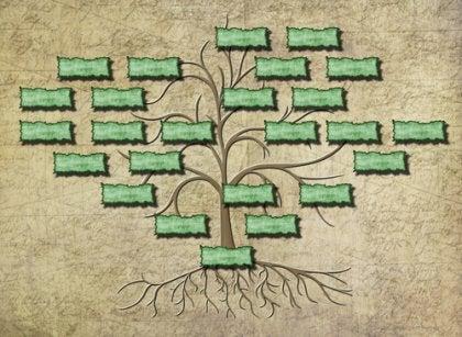 Stamtræ med rødder