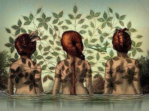 Tre kvinder i vand med træ omkring sig