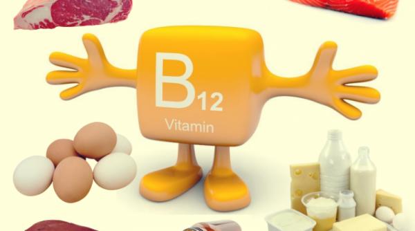 God kost kan være med til at undgå mangel på B12-vitamin