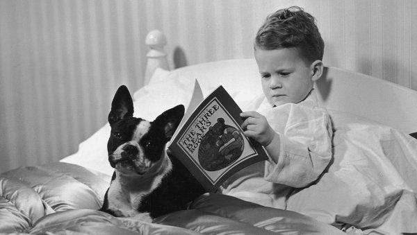 Barn i seng med hund og bog nyder at læse før sengetid