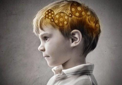 Teorier om udvikling beskæftiger sig meget med børns hjerner