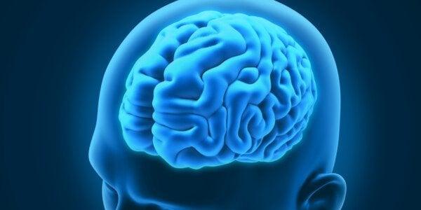 3 interessante neurologiske lidelser