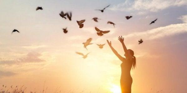 fugle flyver over pige
