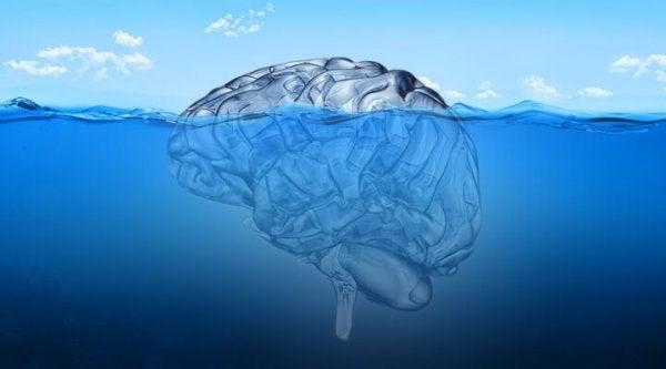 Hjerne flyder i hav
