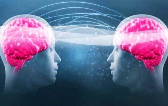 Tryptofan og serotonin: dit velvære afhænger af dem