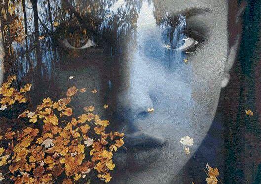 Kvindes silhuet med blade foran
