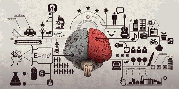 Hjerne med forskellige genstande symboliserer psykologi i reklamer