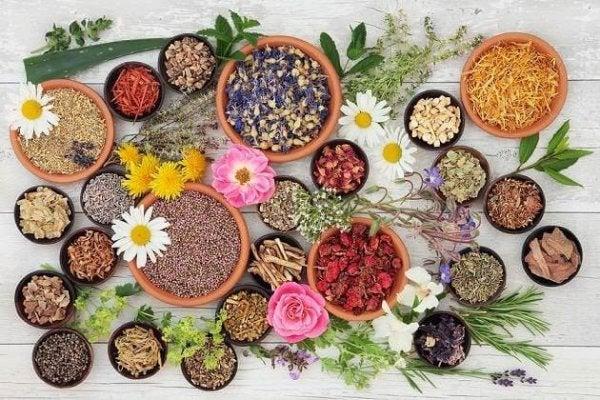 Nogle krydderier er naturlige anxiolytika