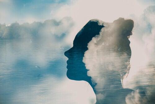 Illusionen af sandhed: at tro, at noget er sandt, når det ikke er