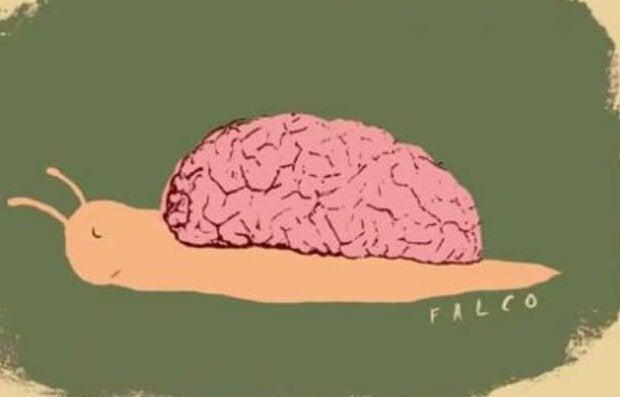 Snegl med hjerne som hus går imod vores uddannelsessystem