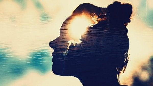 Magnetiske sind: ivrige efter at skabe følelsesmæssige forbindelser