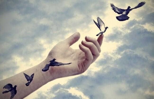 Fugle flyver fra hånd foran himmel