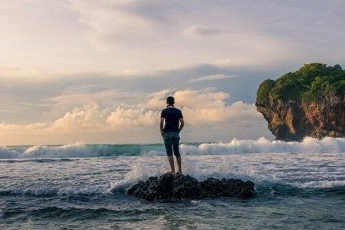 Fyr står på sten og kigger på havet
