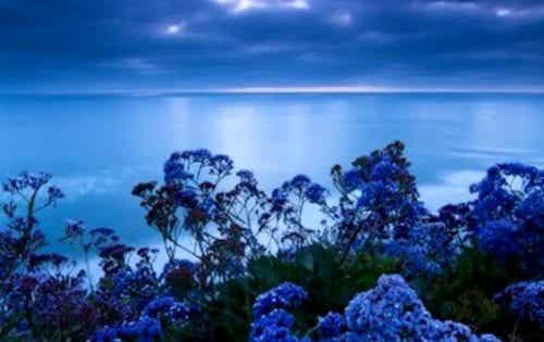 Den stress lettende farve: blå