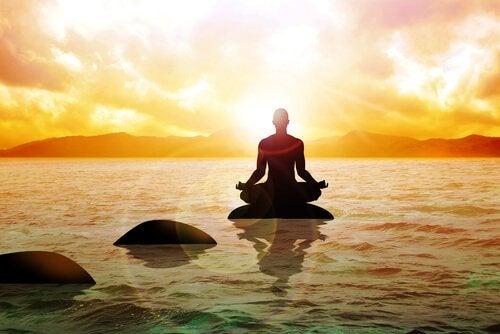 Munk mediterer på sten. 8 måder at gøre en ende på lidelser
