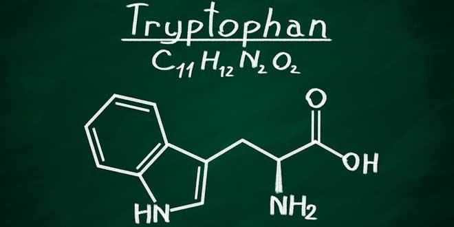 Kemisk struktur: tryptofan
